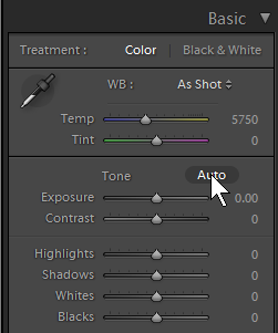 "The ""Auto"" feature of Lightroom under Basic settings"