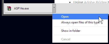 Open downloaded file - Chrome. See lower left of window.